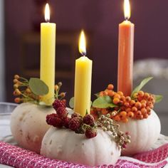 pumpkin & berry candle holders