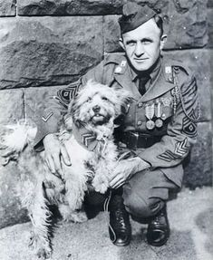 """Army Private James Donovan mistook this dog for a pile of rags when he first found him, hence the name """"Rags"""". In 1918, when the two of them and an infantry unit of 42 men were cut off and surrounded by German troops, Rags carried a message for support that resulted in their rescue. He continued to carry messages throughout the war until both Donavan and Rags were injured by German artillery and gas. Rags quickly recovered from his wounds, but Donovan succumbed a year later in 1919."""