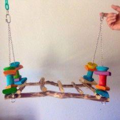 10 Most Simplest Ideas of DIY Toys for Macaws - Diy Food Garden & Craft Ideas #parrotfooddiy #buildaviary #aviariesdiy