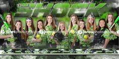 Shock_Softball_Team_Banner_Poster_Jones Photograhy_Team Banner_Sports_Softball_Baseball_Jones Photography_JonesPhotography_Sports Banner_Softball Banner_Baseball Banner_Team Pictures_Softball Posters_Sports Posters_Softball Team Pictures_Macomb County Photographer_Sterling Heights Photographer