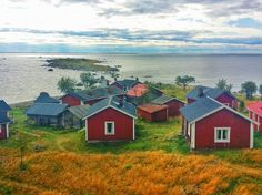 A few of the 40 cabins found on Maakalla, a remote fishermen's island off the coast of Kalajoki, Finland.