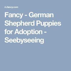 Fancy - German Shepherd Puppies for Adoption - Seebyseeing