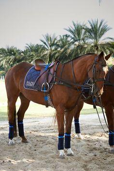La semaine dernière à Dubaï, nous avons organisé le tout premier tournoi de polo féminin international Ralph Lauren