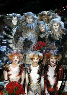 Reni van Maren Cats That Dont Shed, Cat Sketch, Cats Musical, Theatre, Musicals, Broadway Shows, Fandom, Sketches, Van