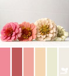 {} Tonalidades flora imagen a través de: @ehpyle