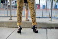 Leopard + Heels