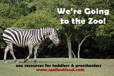 zoo resources for preschool