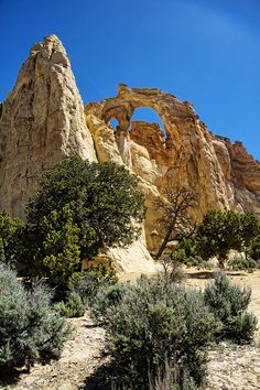 Grosvenor Arch Escalante national Monument Utah