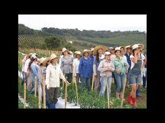 Noiva do Cordeiro es una ciudad brasileña habitada por mujeres, ellas se encargan del gobierno y las actividades económicas.