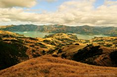 #Rebeccasortland #Photography #Travel #Akaroa #NewZealand