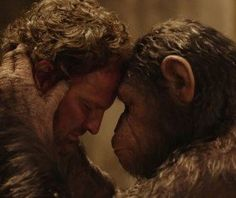 Dawn of the Planet of the Apes Quotes: Apes Do Not Want War