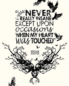 Becoming insane only when your heart was touched. This is something to think about. Rose Underwood Maybe this explains our special kind of crazy. Edgar Allen Poe, Edgar Poe, Edgar Allan, Poe Quotes, Lyric Quotes, Quotable Quotes, Words Quotes, Wise Words, Raven Quotes