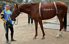 Horse & Rider dressed as football and player | 10 Horses In Crazy Outfits