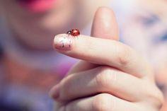 Ladybug and sparkly nail polish (Eleonore Bridge blog) Eleonore Bridge, A Kind Of Magic, Little Things, Pretty Little, Ladybug, Nail Polish, Stud Earrings, Fancy, Blog