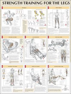 Strength Training For The Legs Chart