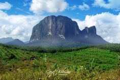Bukit Batu Daya, Ketapang - West Borneo   Indonesia    By: Geget Wibisono
