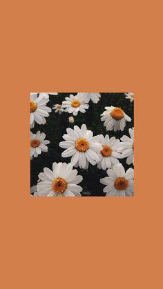 Orange Wallpaper, Mood Wallpaper, Cute Girl Wallpaper, Iphone Wallpaper Tumblr Aesthetic, Cute Patterns Wallpaper, Iphone Background Wallpaper, Retro Wallpaper, Aesthetic Pastel Wallpaper, Scenery Wallpaper