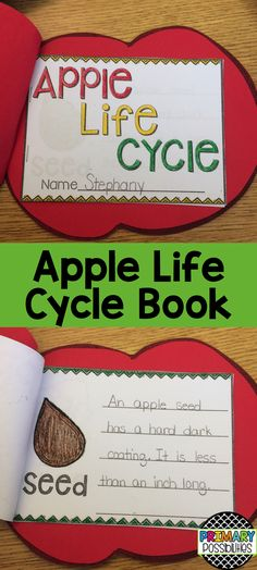 Apple life cycle book... a cute way to show what students have learned about the apple life cycle.