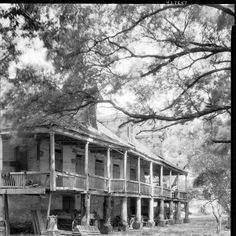 Elmwood plantation....sat like this for a long time....gone now...
