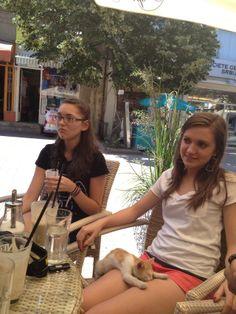 Coffee and a kitten, in downtown Prokuplje, Serbia