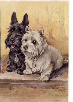 Scottie and Westie Terrier Dog Two Wee by NoCrybabyDoGs on Etsy, $10.00