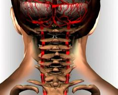 90% populácie s nedostatočnou telesnou hmotnosťou trpí cervikálnou osteochondrózou … Zastavte tento bludný kruh! | Báječné Ženy Beauty Detox, Health And Beauty, Good Advice, Healthy Tips, Body Painting, Healthy Lifestyle, Beauty Hacks, Health Fitness, Hair Beauty
