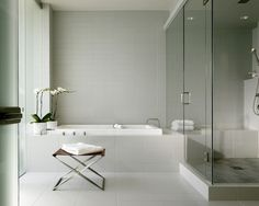 Tub Shower Combo Design, Pictures, Remodel, Decor and Ideas - page 25