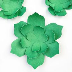 Want to create your paper succulents? PDF and cut file included in this how-to.