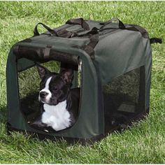 Portable Dog Crate | All Pet Cages
