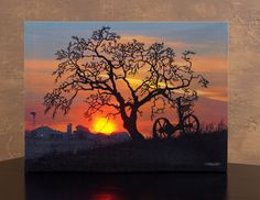 Radiance Lighted Canvas by Ohio Wholesale Waiting for Daybreak