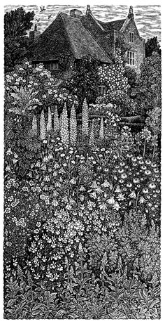 White Garden, Sissinghurst   ...wood engraving by Sue Scullard