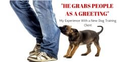 He Grabs People as a Greeting: My Experience With a New Dog Training Client