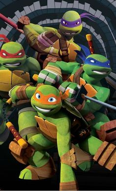 Teenage Mutant Ninja Turtles (2012) ... I love this show way more than I should. ^_^