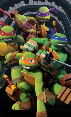Teenage Mutant Ninja Turtles 2012 Leonardo Raphael Donatello Michaelangelo Leo Raph Mikey Donnie