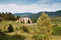 What about a getaway in Catalonia's countryside? #glamping #spain #vineyards