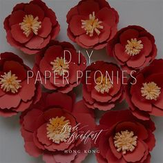 Hope you are all enjoying the Chinese New Year festivities with your loved ones! We really enjoyed making the paper peonies for our CNY greeting yesterday, so we thought we'd share with you t…