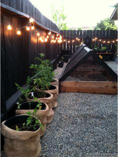 Holtwood Hipster: Holtwood House // Edibles Garden Progress | Raised Garden Beds, String Lights in the Garden