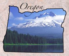 Oregon Term Life Insurance Quotes - No Medical Exam! |  #lifeinsurance  #oregon