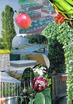 Maria Forssell, www.paradisdesign.se Watermelon, Garden Design, Student, Fruit, Backyard Landscape Design, Landscape Designs, Garden Planning, Yard Design