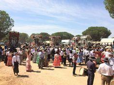 Las hermandades del camino de Bonares rezan el Ángelus en la Casa   del Canelo en el camino de vuelta como viene siendo tradicional desde 2012 Trigueros, Valverde del Camino, Lucena del Puerto, Niebla y Bonares