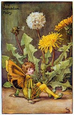 """Vintage print 'The Dandelion Fairy' by Cicely Mary Barker from """"The Book of the Flower Fairies""""; Poem and Pictures by Cicely Mary Barker, Published by Blackie & Son Limited, London [Flower Fairies - Spring] Cicely Mary Barker, Flower Fairies, Spring Fairy, Fairy Pictures, Dandelion Flower, Dandelion Clock, Vintage Fairies, Fantasy Illustration, Digital Illustration"""
