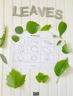 Summer time is the perfect opportunity to really do a ton of nature learning activities. Today I have a cute little Leaf Shape Hunt for you to do with your kids on your next nature Science Experiments For Preschoolers, Preschool Science Activities, Science Ideas, Outdoor Fun For Kids, Stem For Kids, Summer Science, Stem Projects, Creative Teaching, Leaf Shapes