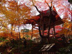 京都  小倉山  常寂光寺。鐘楼。