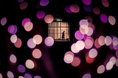 """""""Electric Dreams"""" by Tony Burns      """"A lone commuter enters Shinjuku station amidst winter illuminations in Tokyo."""""""