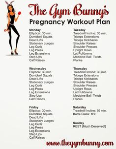 Pregnancy Weekly Workout Plan / Fit Pregnancy / Prenatal Fitness