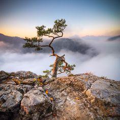 I Live By The Polish Tatra Mountains And I Love Photographing Them | Bored Panda