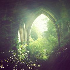 green, nature, and forest image Narnia, Elf Rogue, Solas Dragon Age, The Secret Garden, Beltane, Parcs, Story Inspiration, Fantasy World, Faeries