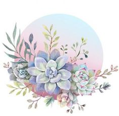 43 Ideas succulent art painting canvases for 2019 Succulents Drawing, Watercolor Succulents, Watercolor Flowers, Watercolor Paintings, Succulents Art, Succulents Wallpaper, Indoor Succulents, Kaktus Tattoo, Succulent Tattoo
