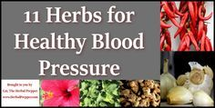 In this live episode, I discuss what my picks are for the top ten herbs for healthy blood pressure. Hypertension is a serious condition that could lead to a heart attack, stroke, aneurysm, heart failure, kidney problems, and vision loss. Even with access to modern medical care, emergency treatment for compilations due to high blood … … Continue reading →