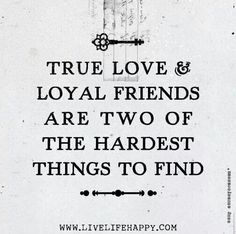 116 Best Friendship Images Friends Funny Phrases Funny Qoutes